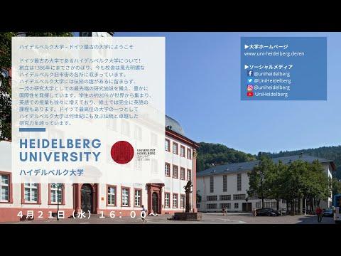 ④ハイデルベルク大学